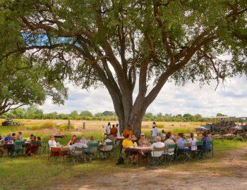 Zambia – Safari in Stijl
