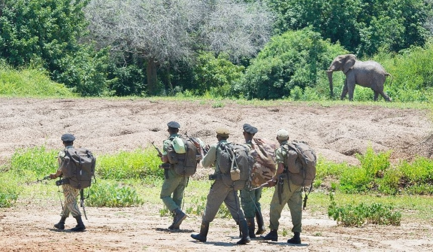 Zwaar bewapende rangers zijn nodig tegen de stropers.