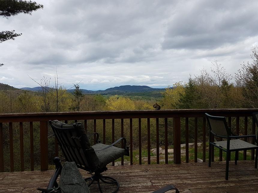 Uitzicht op de Adirondacks vanaf DaCy Meadow Farm
