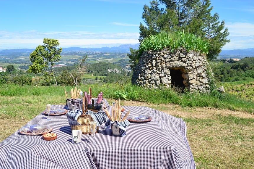Picknick met cava in Penedès