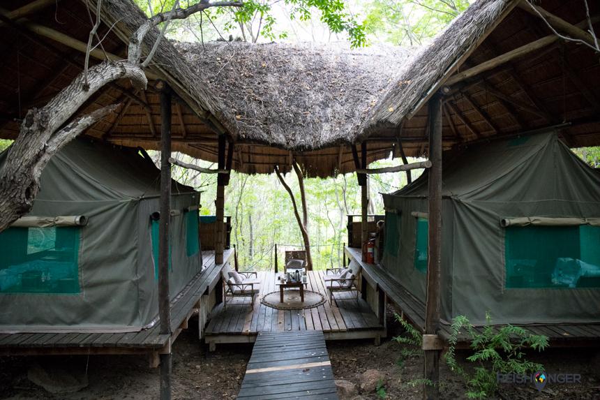 Op het hoofdeiland van Mumbo Island is voor families nabij het strand een safaritent ingericht