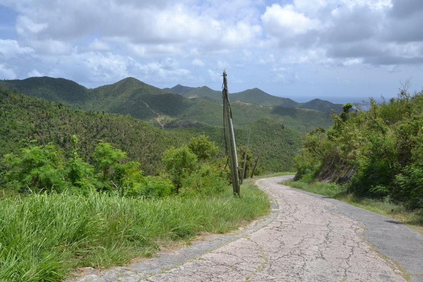 Groen landschap op Sint Maarten