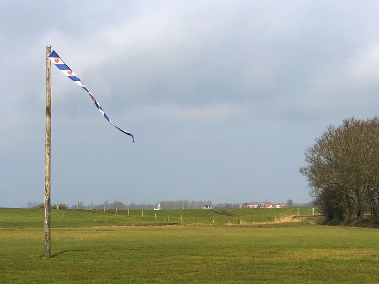 Friese platteland