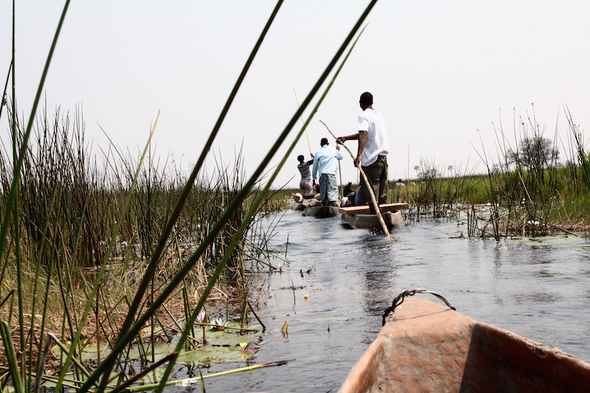 Zicht vanuit de Mokoro - Okavanga Delta vanuit Maun, Botswana