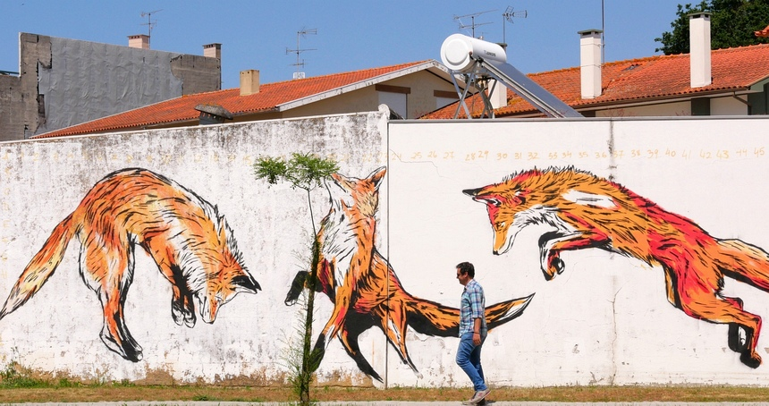Street Art Portugal - Watch the fox!!