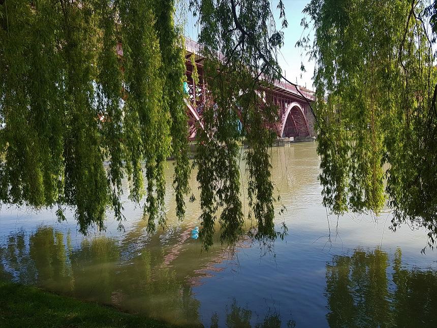 Old Bridge (Drava Bridge) Maribor