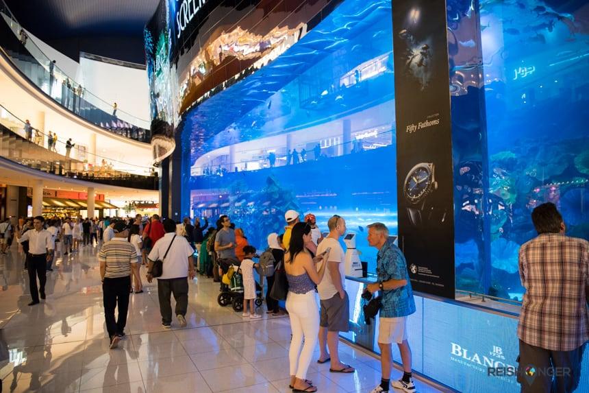 Het aquarium van de Dubai Mall