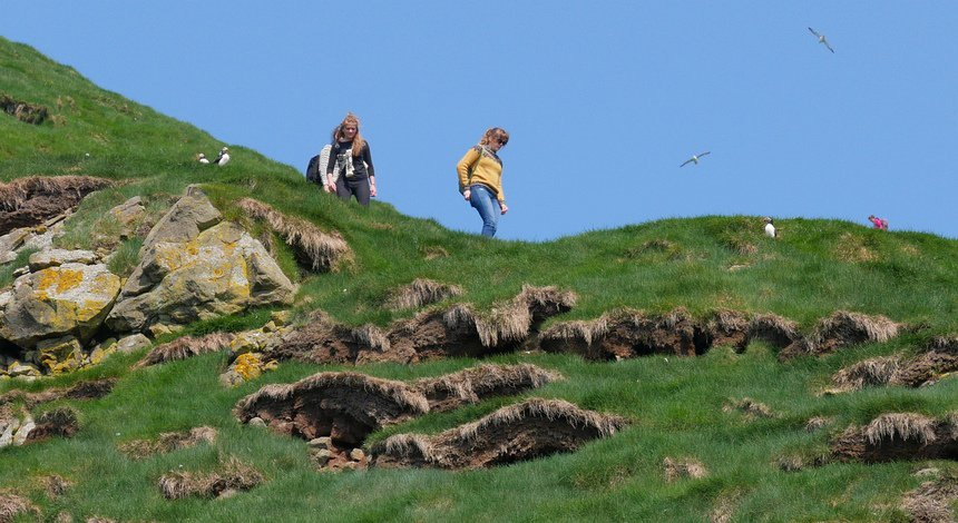 Een hike op vogeleiland Mykines is een veilig avontuur, maar pas op tijdens mist...