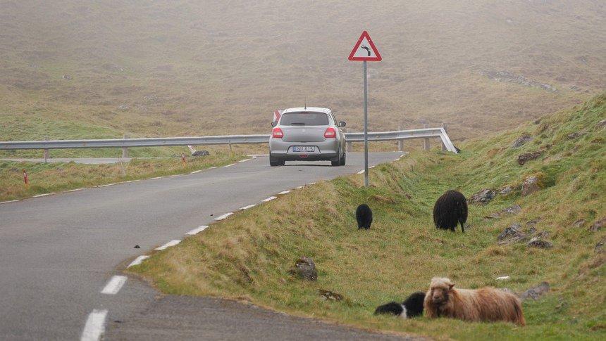 Een roadtrip op de Faeröer is waanzinnig genieten!