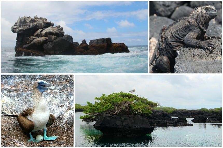 Snorkelen bij Los Tuneles op Isla Isabela, het grootste eiland van de Galapagos