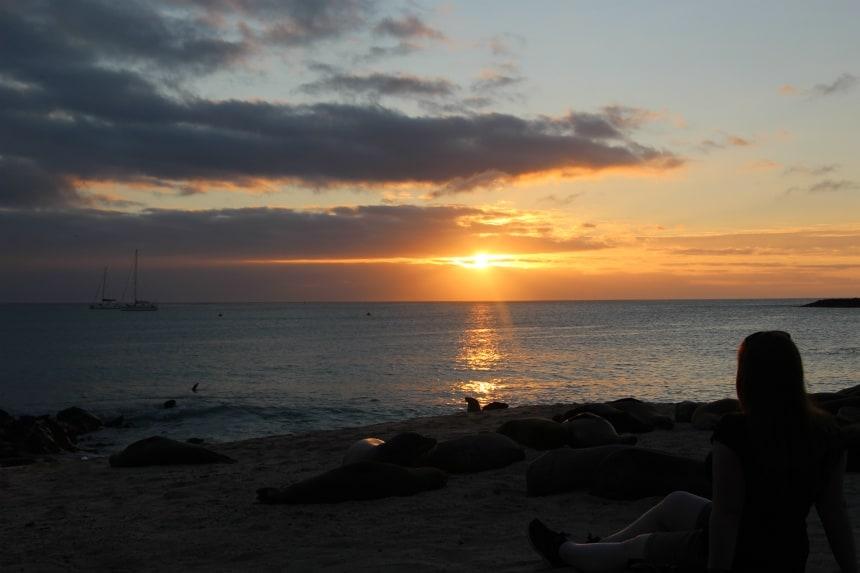 Hoogtepunt op de Galapagos: zonsondergang met zeeleeuwen