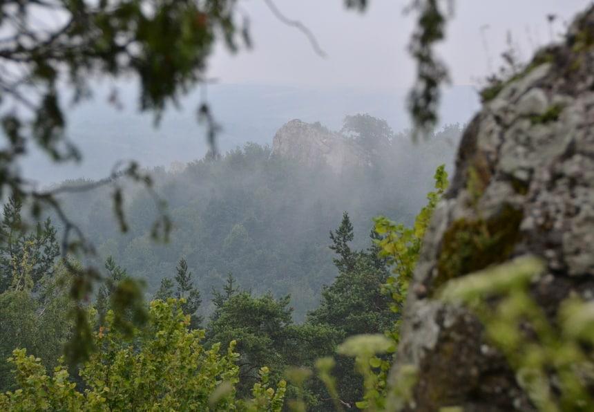 Silezië bestaat uit prachtige bossen met rotsformaties