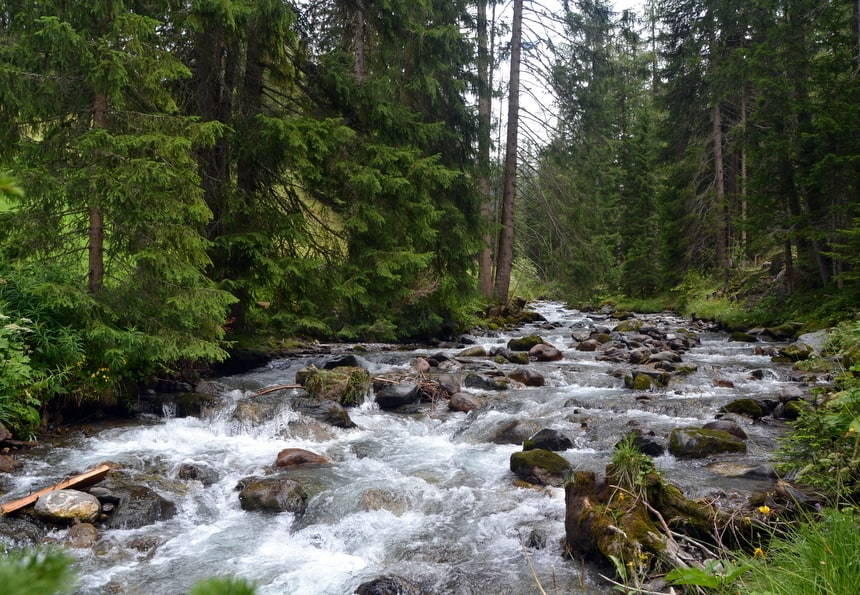 Het GWunderwald in Davos – Klosters