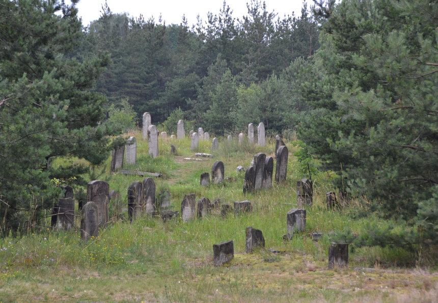 Het verlaten Joodse kerkhof van Żarki