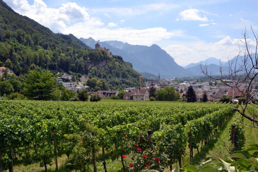 De prinselijke wijngaarden in Liechtenstein