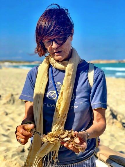 Posidonia op strand Formentera