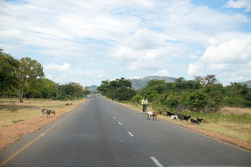 Rijden door Malawi is nooit saai
