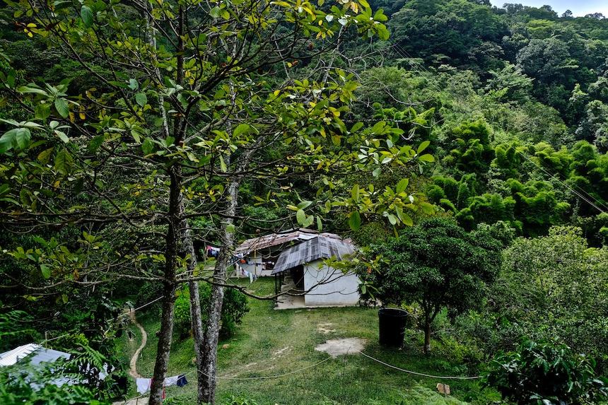 Hutje in Minca in de Sierra Nevada van Colombia, vlakbij Santa Marta