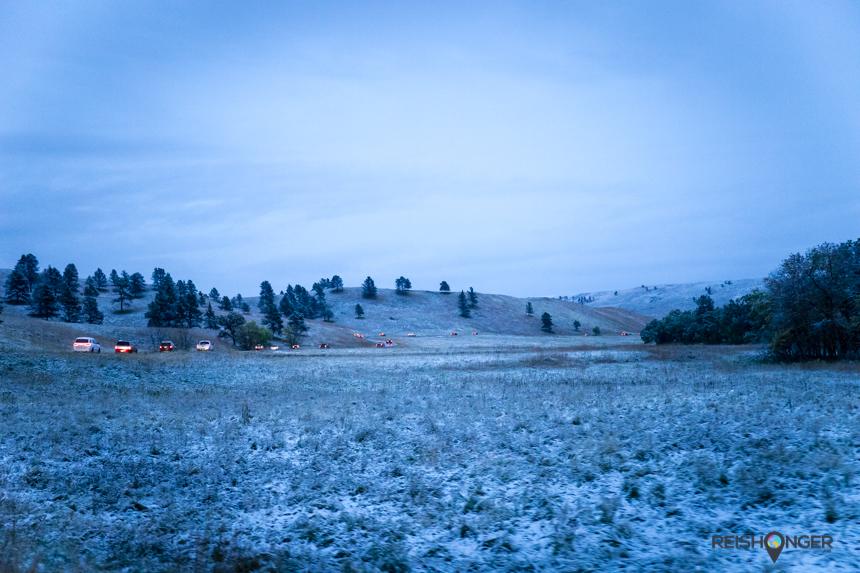 Custer State Park in de vroege ochtend