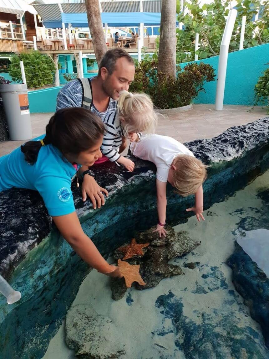 Zeesterren aaien in het Interactive Aquarium in Cancun