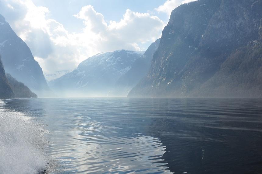 Fjordsafari vanuit Flam