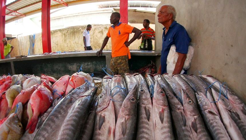 De lokale economie draait op vis en vruchten.