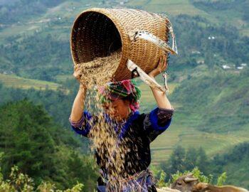 5 Highlights van Vietnam – deze mag jij zeker niet missen!