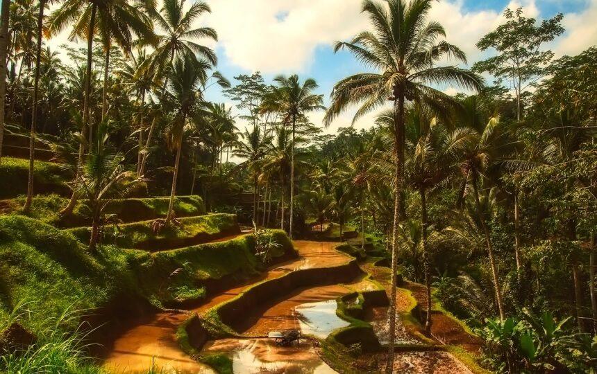Bali in Indonesië