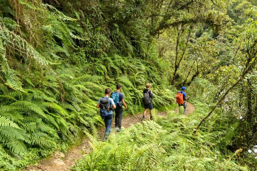 Hiken door het bos tijdens de Salkantay Trail in Peru