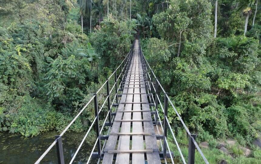 Brug in de jungle van Sri Lanka