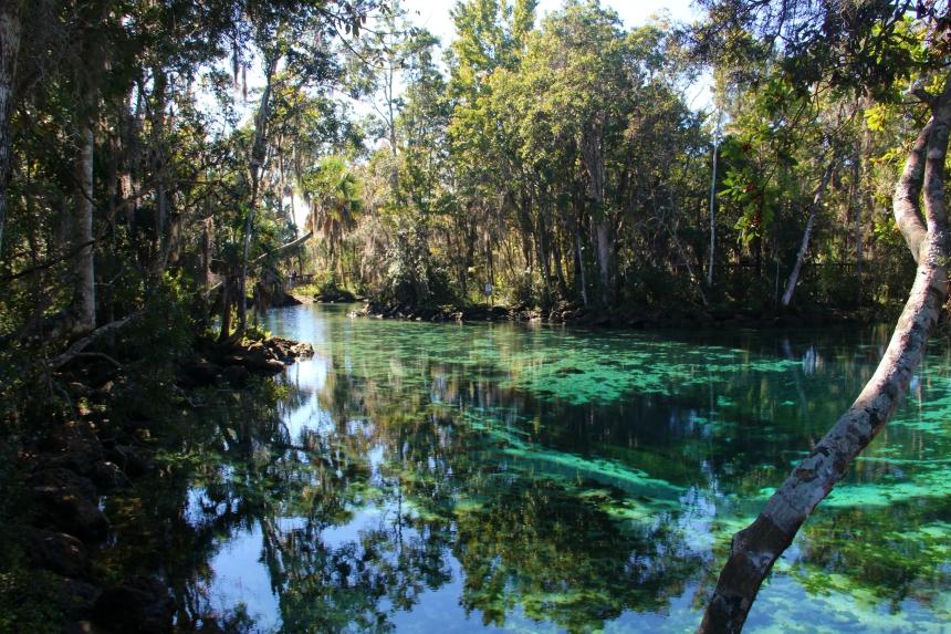 De Three Sisters Springs hebben spectaculaire kleuren