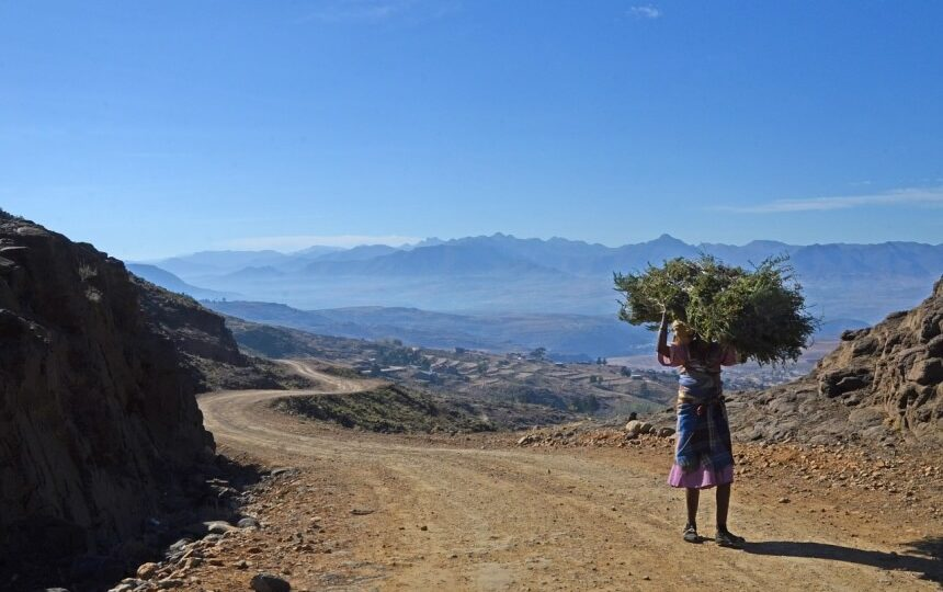 Local in Lesotho in Zuid-Afrika