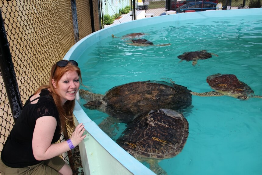Reishonger redactrice Sascha van Zonsbeek ging op ziekenbezoek bij zeeschildpadden