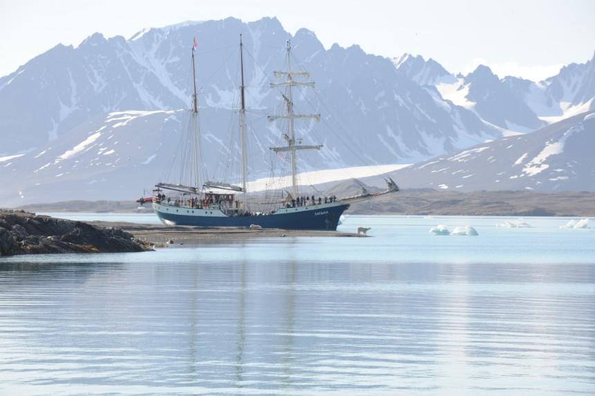 ijsberen spotten expeditieschip Antigua