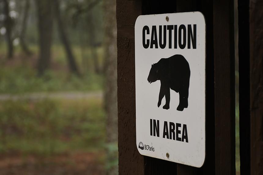 Waarschuwingsbord voor zwarte beren in Jasper national park in Canada
