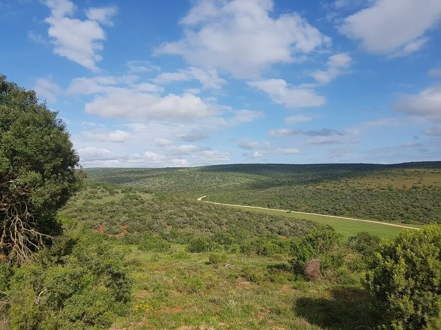 Vergezicht in Addo Elephant National Park