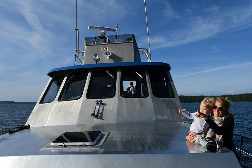Walvistocht met Stubbsisland vanuit Telegraph Cove