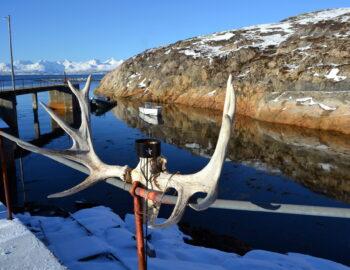 Naar Narvik en Vesterålen: zo noordelijk ging ik nog nooit!