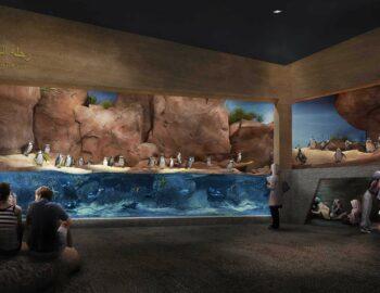 Oman Aquarium, een van de grootste aquariums van het Midden-Oosten