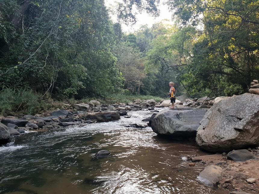natuur ella jungle resort