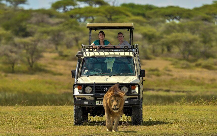 Makasa Tanzania Safaris Safari Tanzania en Zanzibar