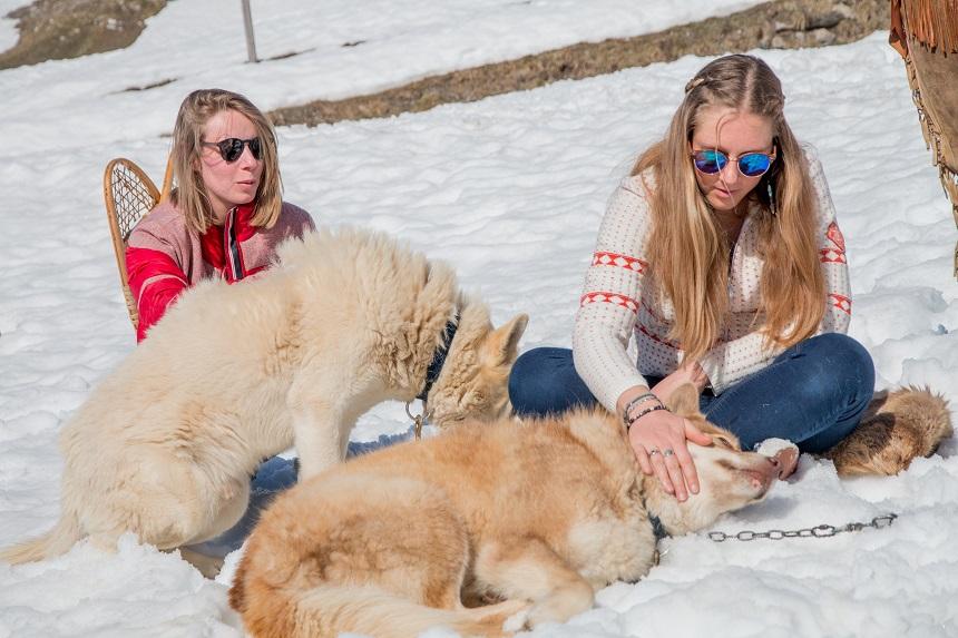 Winteractiviteiten in Val Thorens - ga wandelen met huskeys