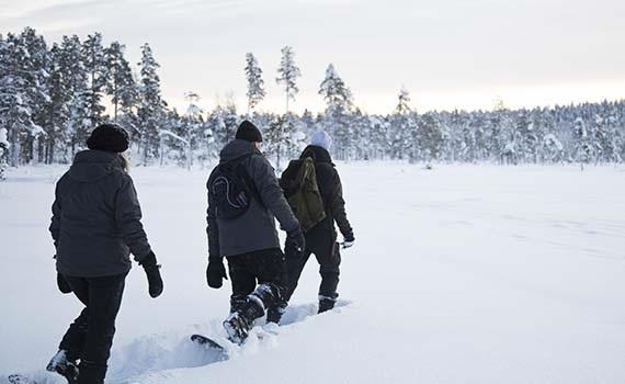 Voigt Travel Sneeuwavontuur Ivalo Fins Lapland