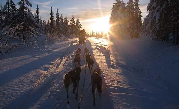 Voigt Travel Sneeuwavontuur Kiruna