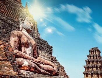 Boek: Als Boeddha Darwin kende