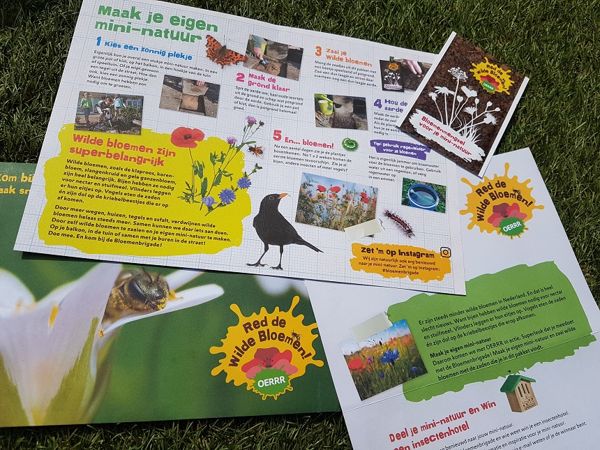 Help mee, red de wilde bloemen en zet heel Nederland in bloei