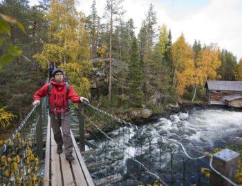 Waarom je in september in Lapland wilt zijn