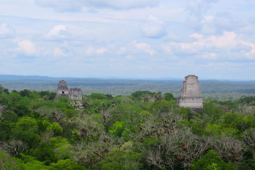 Tikal Guatemala - tempel IV met uitzicht over de andere drie tempels