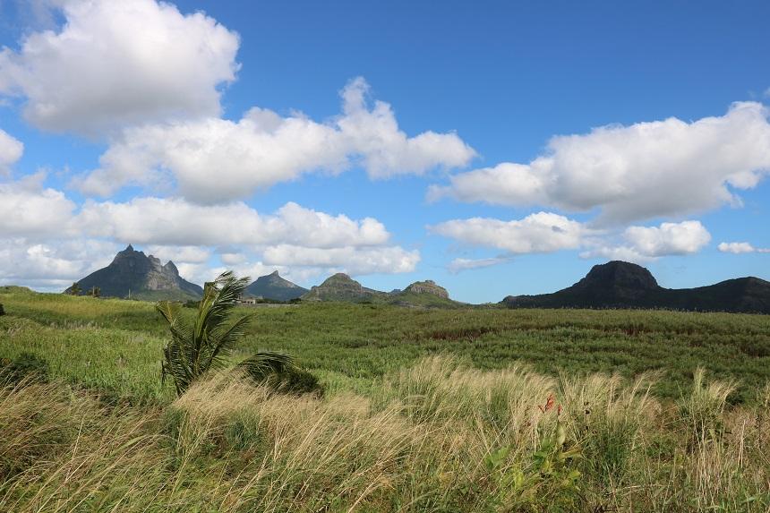 Binnenland van Mauritius met de een na hoogste top Peter Both