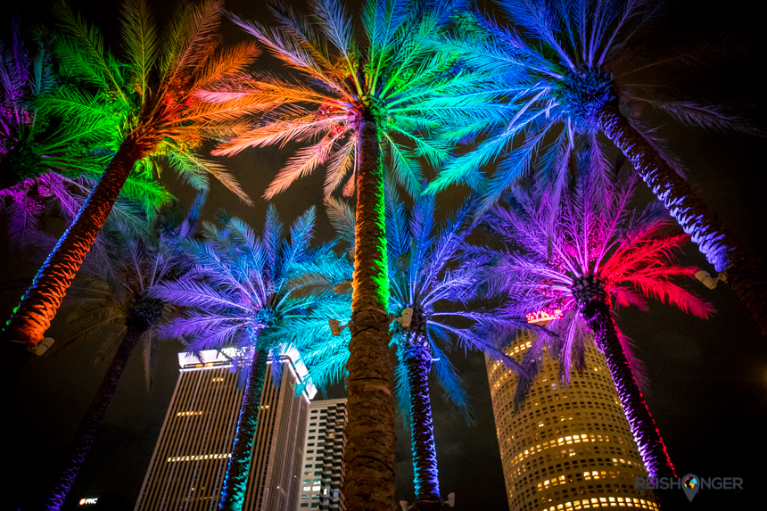 Verlichte palmbomen Tampa
